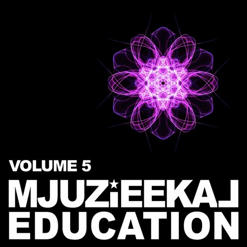 VA - Mjuzieekal Education, Vol. 5 [MJUZIEEKALLP005]
